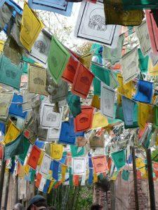 Tibetan Prayer Flags (displayed at Disney World)