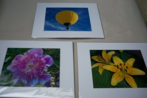 Hot air balloon, Peony, Asiatic lilies