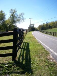 Nina Road