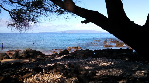 Ulua Beach Maui