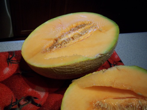 Ripe cantaloupe....best of the season